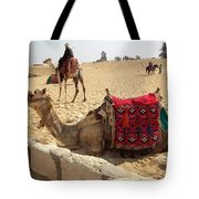 Egypt - Camel Getting Ready For The Ride Tote Bag