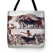 Egypt: Tomb Painting Tote Bag