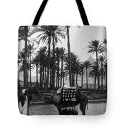 Egypt: Village Tote Bag