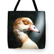 Egyptian Goose 2 Tote Bag