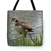Egyptian Goose Climbing Fence Tote Bag