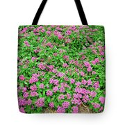 Egyptian  Star-cluster Tote Bag