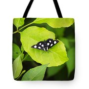Eight Spotted Forester Tote Bag
