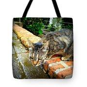 El Gato Iv Tote Bag