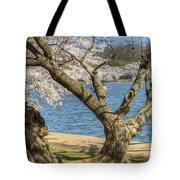 Elder Cherry Tree Tote Bag