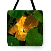 Eldorado For Bees Tote Bag
