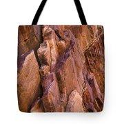 Eldorado Springs 8 Tote Bag