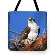 Electric Blue Osprey Tote Bag