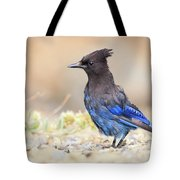 Electric Blue Tote Bag by Windy Corduroy
