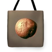 Electrum Nugget, C1100 B.c Tote Bag