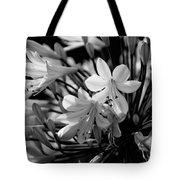 Elegance - Bw Tote Bag