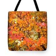 Elegant  Autumn Tote Bag