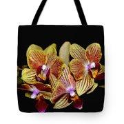Elegant Orchid On Black Tote Bag