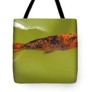 Elegant Swim Tote Bag