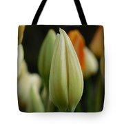 Elegant Tulip Tote Bag