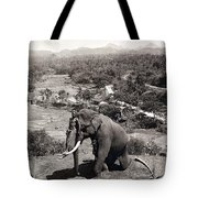 Elephant And Keeper, 1902 Tote Bag