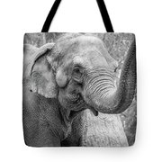 Elephant And Tree Trunk Black And White Tote Bag