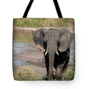 Elephant At The River Tote Bag
