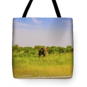 Elephant At The Road Tote Bag