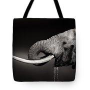 Elephant Bull Drinking Water - Duetone Tote Bag