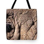 Elephant Eye Closeup  Tote Bag