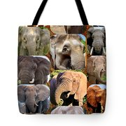 Elephant Faces Tote Bag