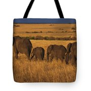 Elephant Family - Sunset Stroll Tote Bag