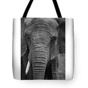 Elephant In Black And White Tote Bag
