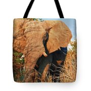 Elephant On Approach Tote Bag