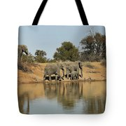 Elephant Refelction Tote Bag