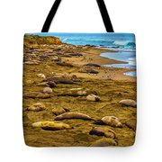 Elephant Seals Near Cambria  Tote Bag