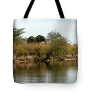 Elephant Sighting Tote Bag