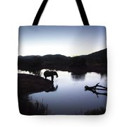 Elephant Silhouette At Sunset Tote Bag
