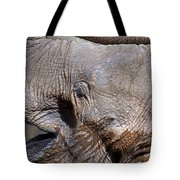 Elephant Smile Tote Bag