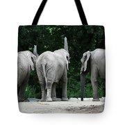 Elephant Trio Tote Bag
