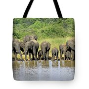 Elephants At The Waterhole   Tote Bag