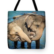 Elephants Bathing In A River Tote Bag