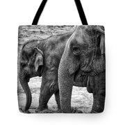 Elephants Bw Tote Bag