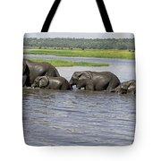 Elephants Crossing Chobe River Tote Bag