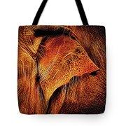 Elephant's Ear Tote Bag