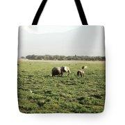 Elephants Grazing Tote Bag