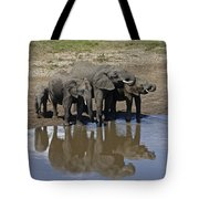 Elephants In The Mirror Tote Bag