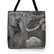 Elephants Playing 3 Tote Bag