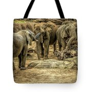 Elephants Social Tote Bag