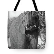 Elephant's Supper Time In Black And White Tote Bag