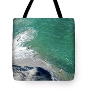 Eleven Brown Pelicans Tote Bag