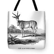 Elk Antelope Tote Bag