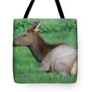 Elk Cow Tote Bag