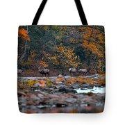 Elk Crossing Tote Bag