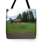 Elk Feeding Tote Bag